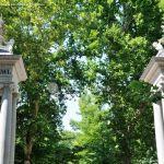 Foto Jardín del Principe 3