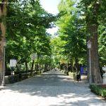 Foto Jardín del Principe 7