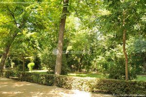 Foto Jardín del Principe 9
