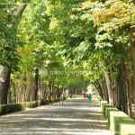 Foto Jardín del Principe 11