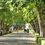 Foto Jardín del Principe 12