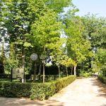 Foto Jardín del Principe 13