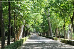 Foto Jardín del Principe 15