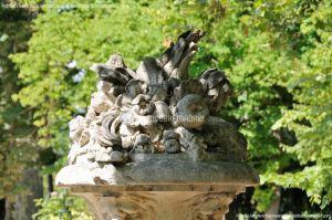 Foto Jardín del Principe 19