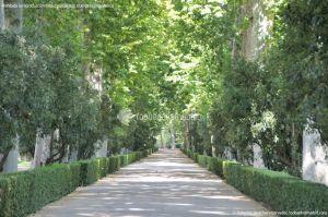 Foto Jardín del Principe 21