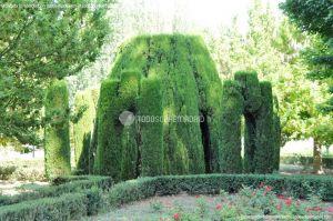 Foto Jardín del Principe 24