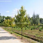 Foto Jardín del Principe 34