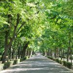 Foto Jardín del Principe 36