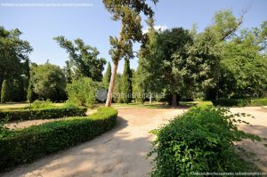 Foto Jardín del Principe 49