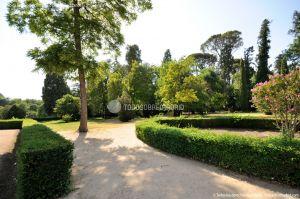 Foto Jardín del Principe 51