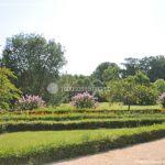 Foto Jardín del Principe 54