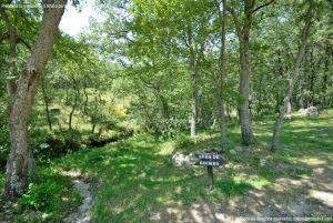 Foto Área Recreativa Parque Dehesa de la Acebeda 1
