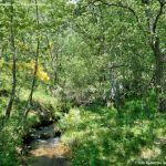 Foto Área Recreativa Parque Dehesa de la Acebeda 3