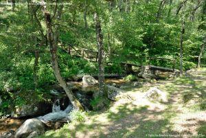 Foto Área Recreativa Parque Dehesa de la Acebeda 13