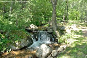 Foto Área Recreativa Parque Dehesa de la Acebeda 15