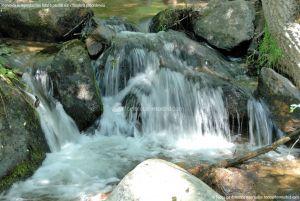 Foto Área Recreativa Parque Dehesa de la Acebeda 16