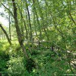 Foto Área Recreativa Parque Dehesa de la Acebeda 18
