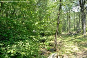 Foto Área Recreativa Parque Dehesa de la Acebeda 19