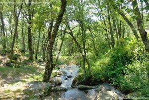 Foto Área Recreativa Parque Dehesa de la Acebeda 20