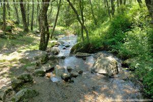 Foto Área Recreativa Parque Dehesa de la Acebeda 21