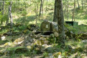 Foto Área Recreativa Parque Dehesa de la Acebeda 22