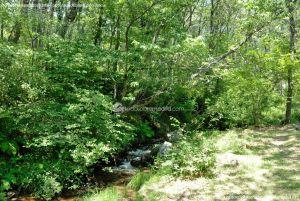 Foto Área Recreativa Parque Dehesa de la Acebeda 26