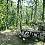 Foto Área Recreativa Parque Dehesa de la Acebeda 27