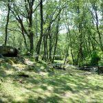 Foto Área Recreativa Parque Dehesa de la Acebeda 28