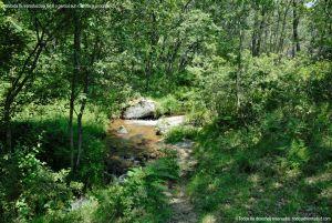 Foto Área Recreativa Parque Dehesa de la Acebeda 29