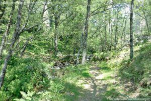 Foto Área Recreativa Parque Dehesa de la Acebeda 31