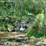 Foto Área Recreativa Parque Dehesa de la Acebeda 34