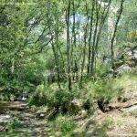 Foto Área Recreativa Parque Dehesa de la Acebeda 36