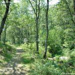 Foto Área Recreativa Parque Dehesa de la Acebeda 37