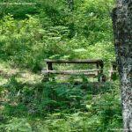 Foto Área Recreativa Parque Dehesa de la Acebeda 40