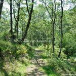 Foto Área Recreativa Parque Dehesa de la Acebeda 44