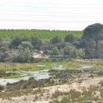 Foto Río Perales en Aldea del Fresno 1