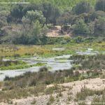 Foto Río Perales en Aldea del Fresno 3