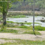 Foto Río Perales en Aldea del Fresno 7
