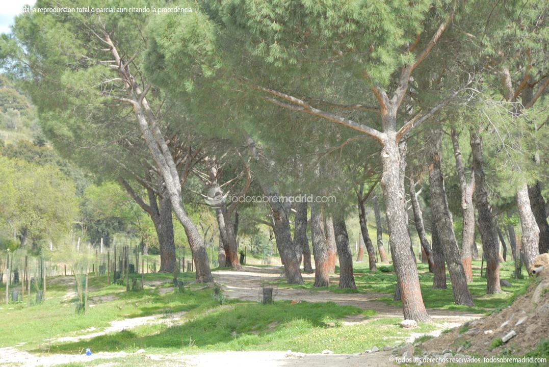 Parque r o perales en aldea del fresno for Jardin oriental aldea del fresno