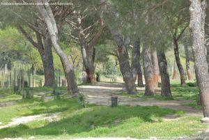 Foto Parque Río Perales en Aldea del Fresno 2