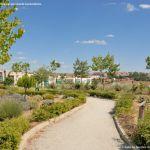 Foto Parque de Europa en Algete 13