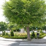 Foto Plaza de la Constitución de Alpedrete 2
