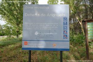 Foto Zona Recreativa Dehesa de Anchuelo 1