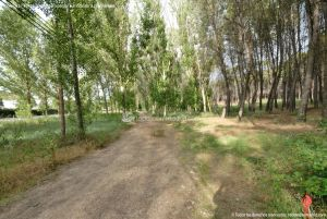 Foto Zona Recreativa Dehesa de Anchuelo 2