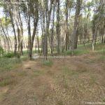 Foto Parque Forestal La Dehesa de Anchuelo 2