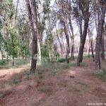 Foto Parque Forestal La Dehesa de Anchuelo 5