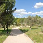 Foto Parque Arroyo Moraleja 5