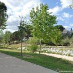 Foto Parque Arroyo Moraleja 9