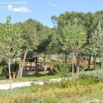 Foto Parque Arroyo Moraleja 16