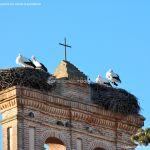 Foto Cigüeñas en Boadilla del Monte 5
